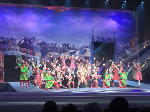 Spectacle cirque Phénix